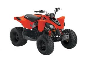 Can-Am DS STD 90 Red Terräng 2022