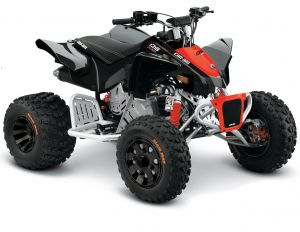 Can-Am DS X 90 2021 Black &  Red Terräng