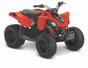Can-Am DS STD 90 2021 Red Terräng